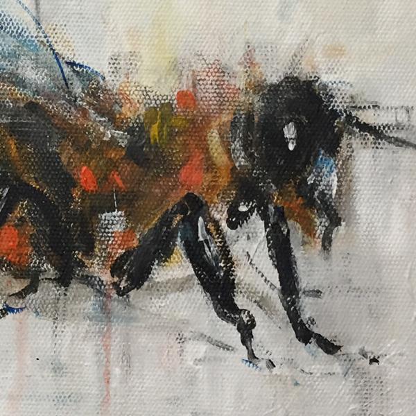 Bumble Bee painting - Artist Ewen Macaulay