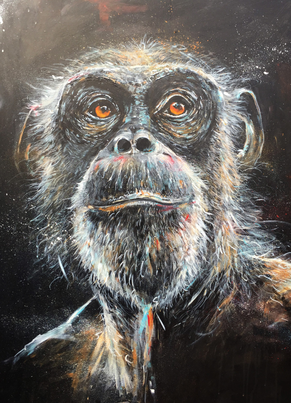 Chimpanzee Gaze by Artist Ewen Macaulay