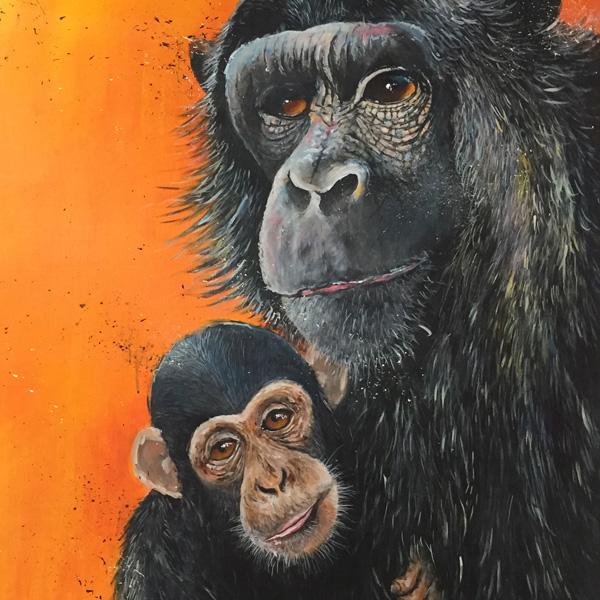 Ewen Macaulay Artist - Chimpanzees